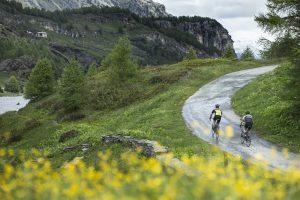 Jak wybrać dobry rower dla siebie-min